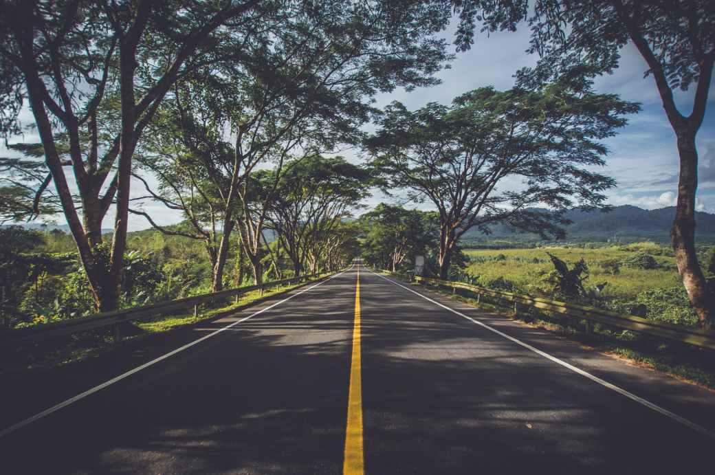 asphalt environment grass highway